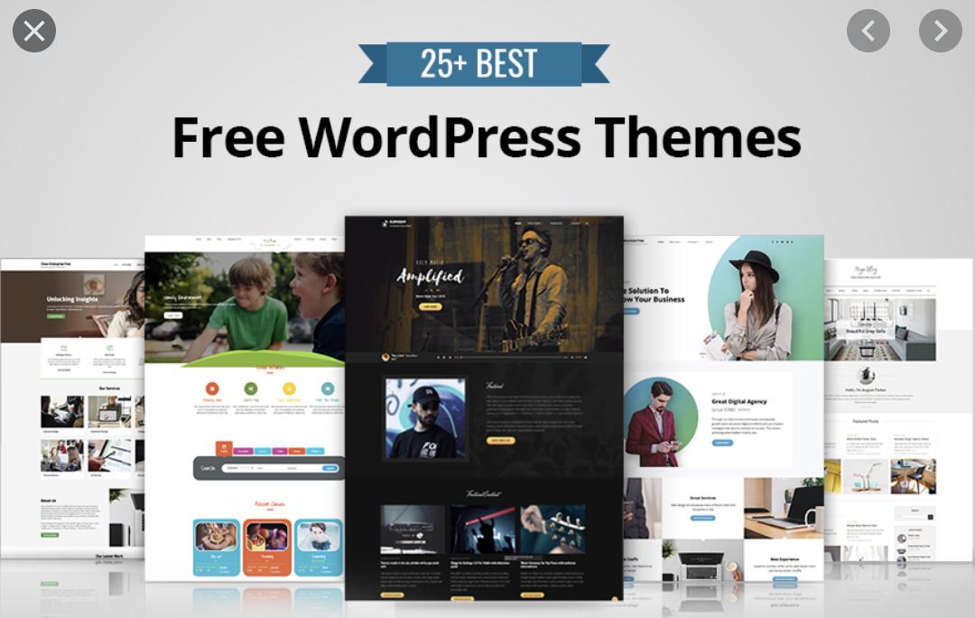 ThemeForest premium themes